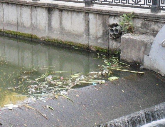 Река Салгир обросла «щетиной» (фото), фото-5