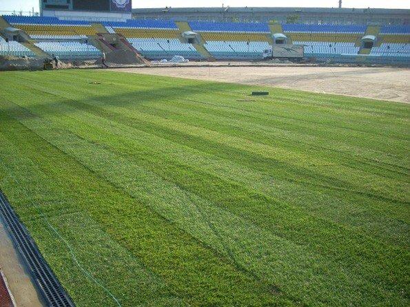 На стадионе «Авангард» начались работы по укладке газона, фото-1