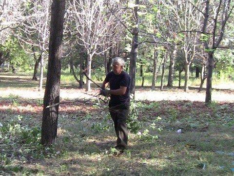 Для отдыха жителей Калининского района благоустраивается парк Гурко, фото-1