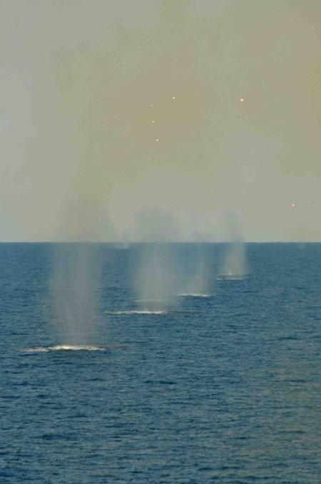 В Крыму отстреливались от вражеских кораблей (фото), фото-2