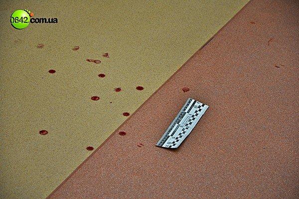 В Луганске на сессии горсовета пролилась кровь (ВИДЕО, ФОТО), фото-7