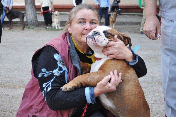 В Симферополь привезли лучших собак со всей Украины (фото), фото-4