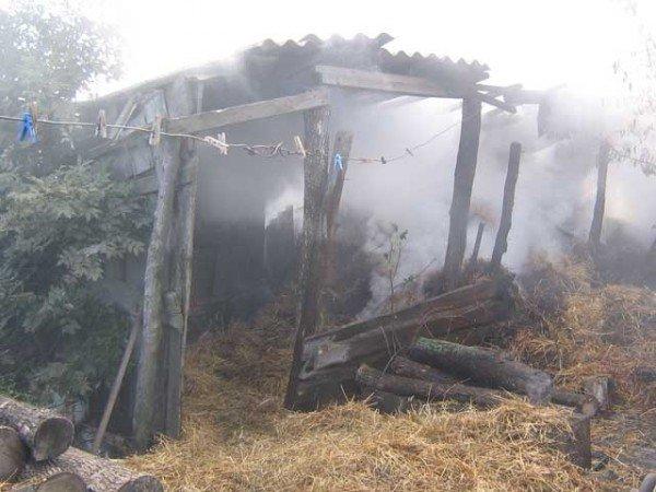 Сжигая мусор, хозяйка заодно подожгла и полторы тонны сена (ФОТО), фото-1