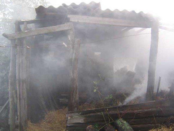 Сжигая мусор, хозяйка заодно подожгла и полторы тонны сена (ФОТО), фото-2