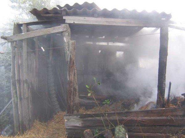 Сжигая мусор, хозяйка заодно подожгла и полторы тонны сена (ФОТО), фото-3