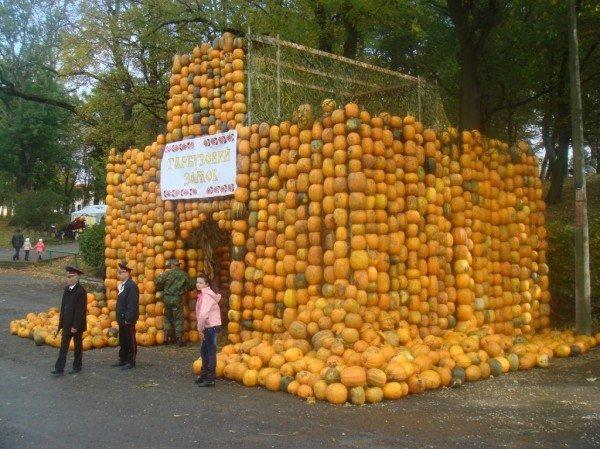 У Збаражі зафіксували рекорд України – замок із гарбузів (фото), фото-1