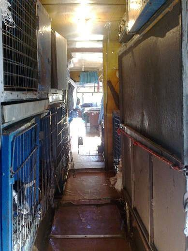 Защитники животных проверили передвижной цирк «Европа» (ФОТО), фото-3
