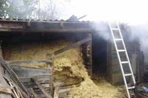 На Николаевщине старушка собралась испечь хлеб и едва дом не сожгла (ФОТО), фото-3