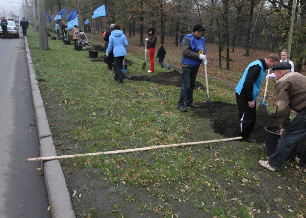 Дончане вышли на субботник под знаменами регионалов и в голубых партийных жилетах (фото), фото-4