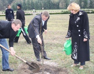 Представники ВО «Свобода» посадили липову алею в Зарваниці, фото-1