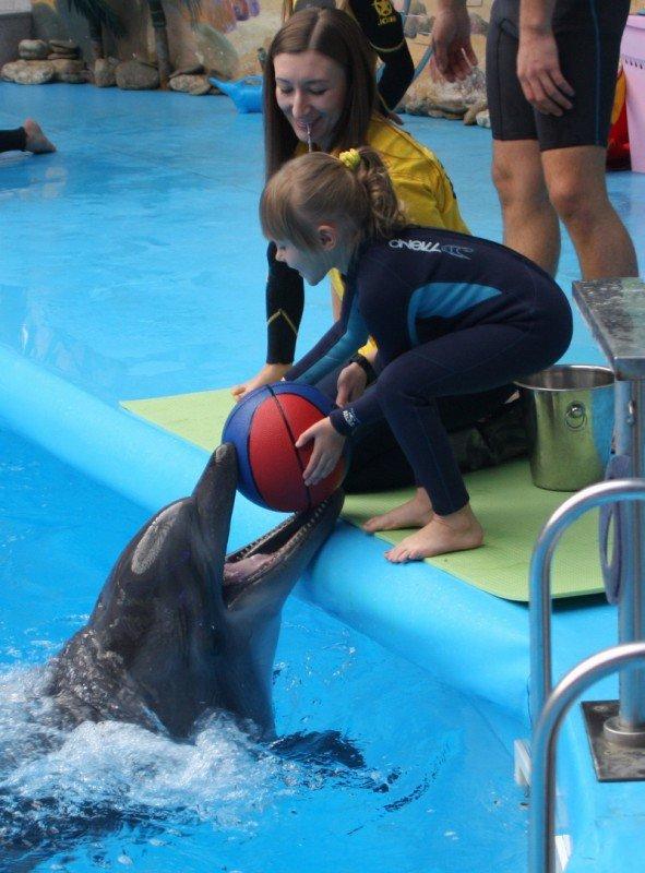 Как дельфины в Донецке лечили детей (фото), фото-6