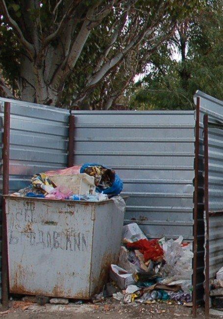 Несколько крупных микрорайонов Николаева рискуют оказаться в завалах мусора (ФОТО), фото-2