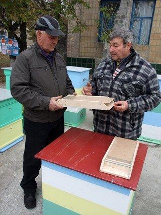 Донецкие пчеловоды начали готовиться к Апимондии (фото), фото-1
