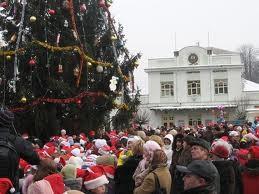В Ужгороді встановили головний символ новорічних свят, фото-2