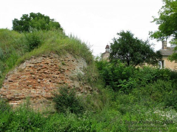 На Волині Замок Радзивіллів і далі занепадатиме, фото-2
