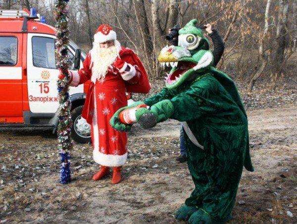 Запорожские спасатели торжественно сожгли новогоднюю елку (ФОТО), фото-1