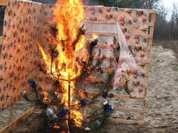 Запорожские спасатели торжественно сожгли новогоднюю елку (ФОТО), фото-5