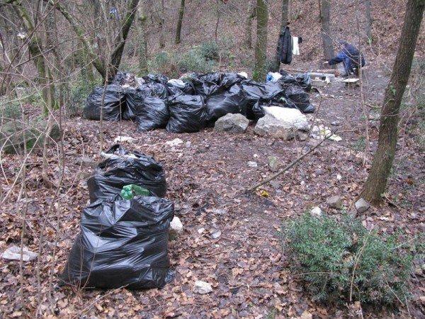 150 мешков мусора - итог трех субботников команды «Фрирайт», фото-5