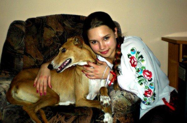 Тернополяни просять про допомогу: пропала собака, фото-1
