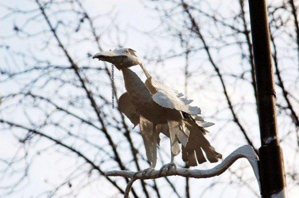 В Симферополе прижилась белая ворона (фото), фото-1