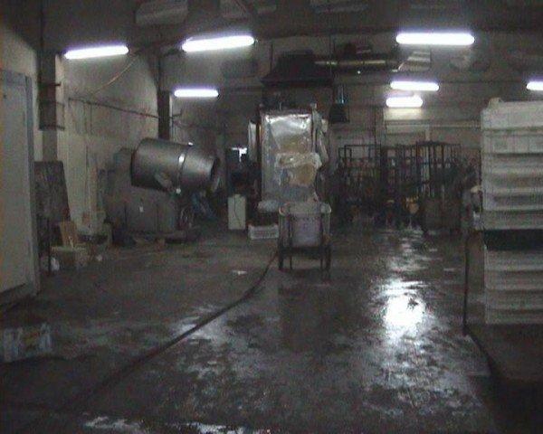 В Алчевске накрыли нелегальный колбасный цех (ФОТО), фото-1