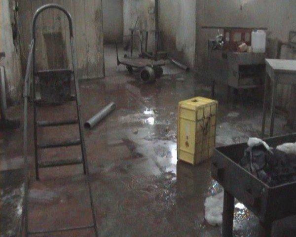В Алчевске накрыли нелегальный колбасный цех (ФОТО), фото-2