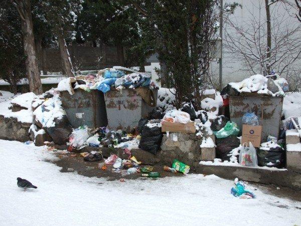 Жители Алупки задыхаются от мусора, который уже неделю не вывозят (ФОТО), фото-1