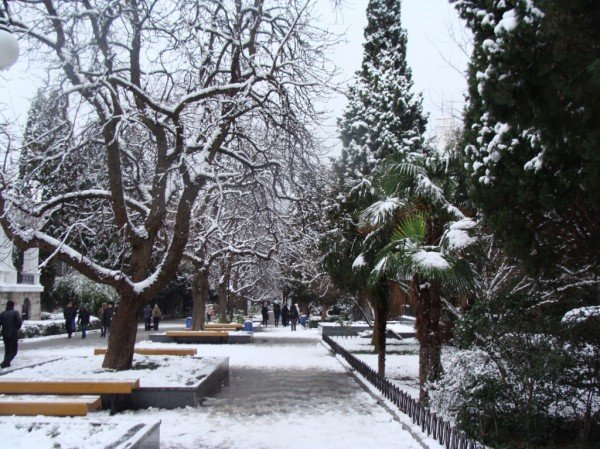 В Ялте зима уже закончилась (ФОТО), фото-11