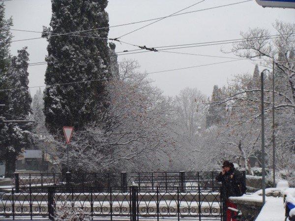 В Ялте зима уже закончилась (ФОТО), фото-8