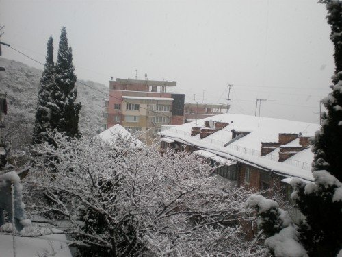 Большую Ялту снова засыпало снегом (ФОТО), фото-3