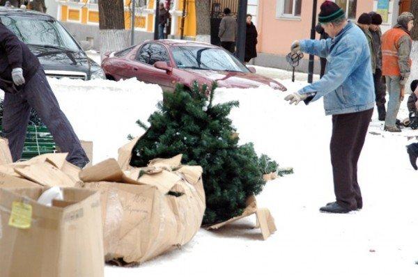 В Симферополе начали разбирать новогодние елки (фотофакт), фото-2