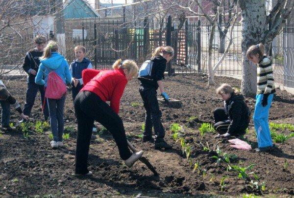 В Запорожской области «тимуровцы» копают огороды, обрезают ветки и всячески помогают пенсионерам (ФОТО), фото-2