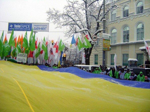 Горловчане отпраздновали День соборности на митинге в Киеве, фото-3