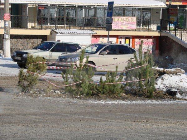 В центре Артемовска из асфальта выросли... елки!, фото-3