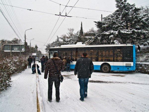 Ялту завалило снегом. В поселках ЮБК ни пройти, ни проехать (ФОТО), фото-6