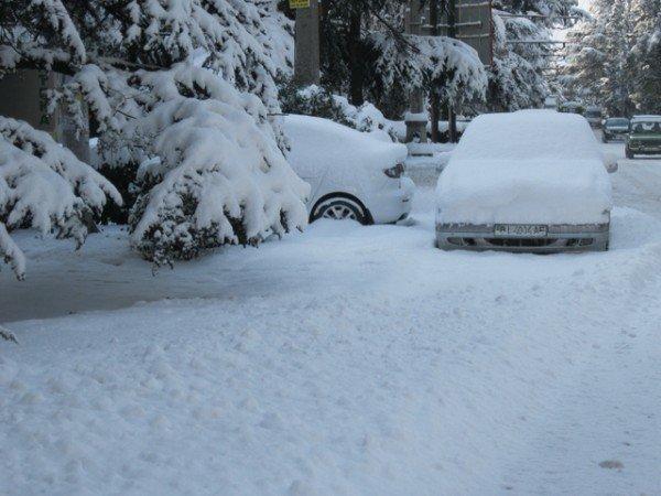В Ялте – снежный покров в 33 сантиметра (ФОТО), фото-4