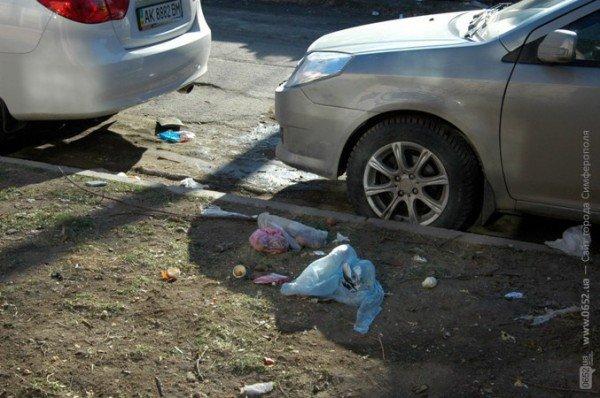 В Симферополе дорога к «покращенню життя» пролегла через мусорные завалы (фото), фото-6