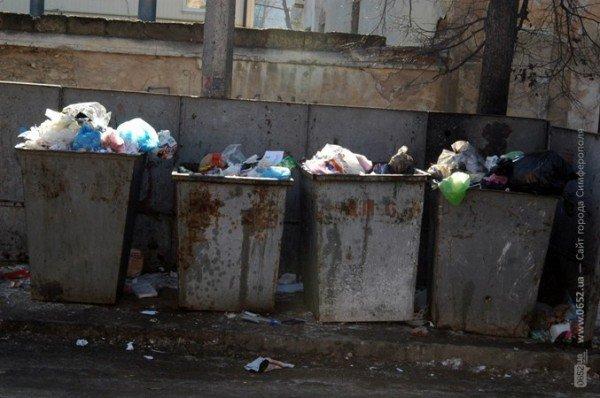 В Симферополе дорога к «покращенню життя» пролегла через мусорные завалы (фото), фото-7