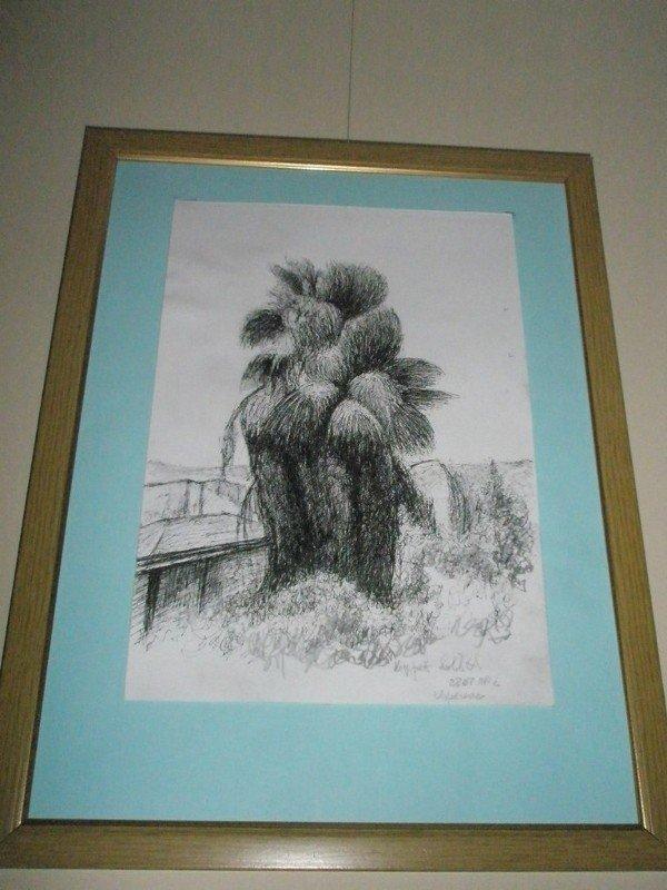 В Кривом Роге открылась выставка, приуроченная к Новому году деревьев - Ту би-Шват (ФОТО), фото-4