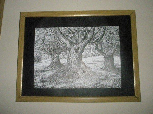 В Кривом Роге открылась выставка, приуроченная к Новому году деревьев - Ту би-Шват (ФОТО), фото-8