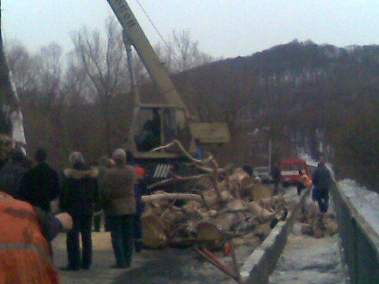 Через дерево під мостом МНСники перекрили дорогу на 2 години (ФОТО), фото-3