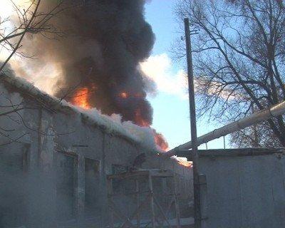 У Львові згоріли деревообробні цехи, фото-2