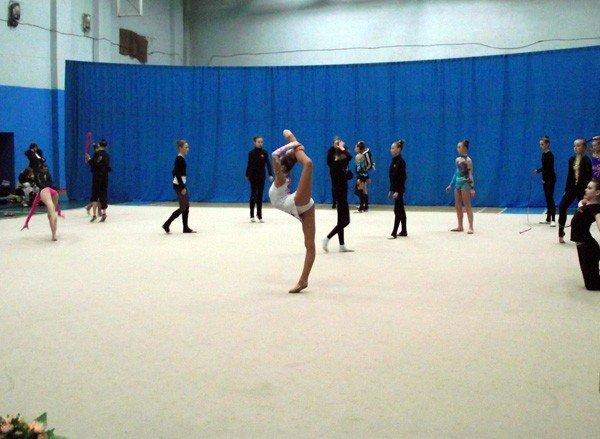 В Горловке проходят областные соревнования по самому красивому виду спорта, фото-1