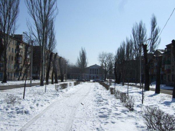 В Донецке вырубили парковую аллею, чтобы расчистить место для  автопарковки (фото), фото-4