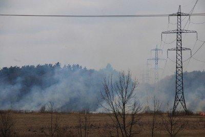 На Львівщині через спалювання минулорічного листя горять торф'яники та гектари сухої трави, фото-9