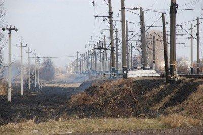 На Львівщині через спалювання минулорічного листя горять торф'яники та гектари сухої трави, фото-3