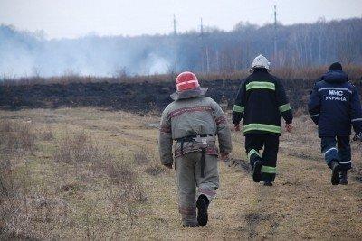 На Львівщині через спалювання минулорічного листя горять торф'яники та гектари сухої трави, фото-5