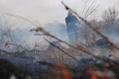 На Львівщині через спалювання минулорічного листя горять торф'яники та гектари сухої трави, фото-6