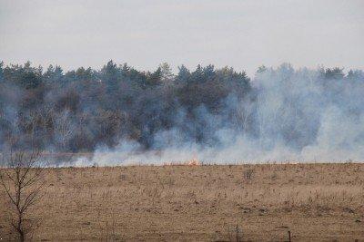 На Львівщині через спалювання минулорічного листя горять торф'яники та гектари сухої трави, фото-7