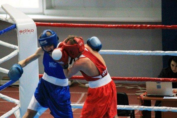 В Артемовске начали отбор лучших боксеров для чемпионата Украины, фото-1